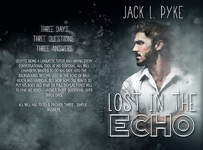 Lost in the Echo-paperback.jpg