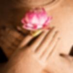 lotus-buddhahands-min.png