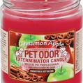 apple cinnamon.jpg