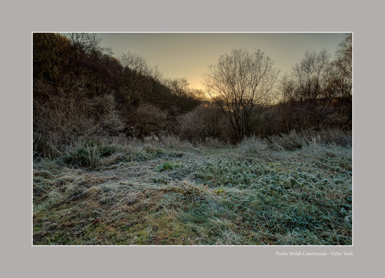 Frosty Countryside.jpg
