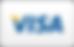 iconfinder_Visa-Curved_70599.png