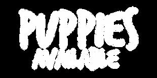 PUPIES%2520AV-02_edited_edited.png