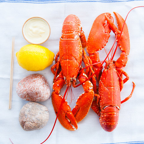 Cooked Lobsters (2 or 4)