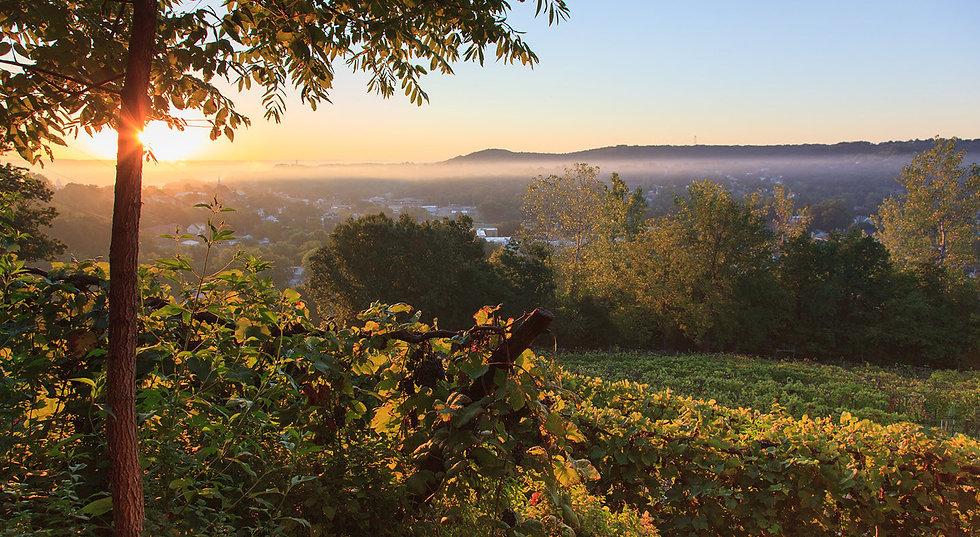 wineries-slide-1.jpg