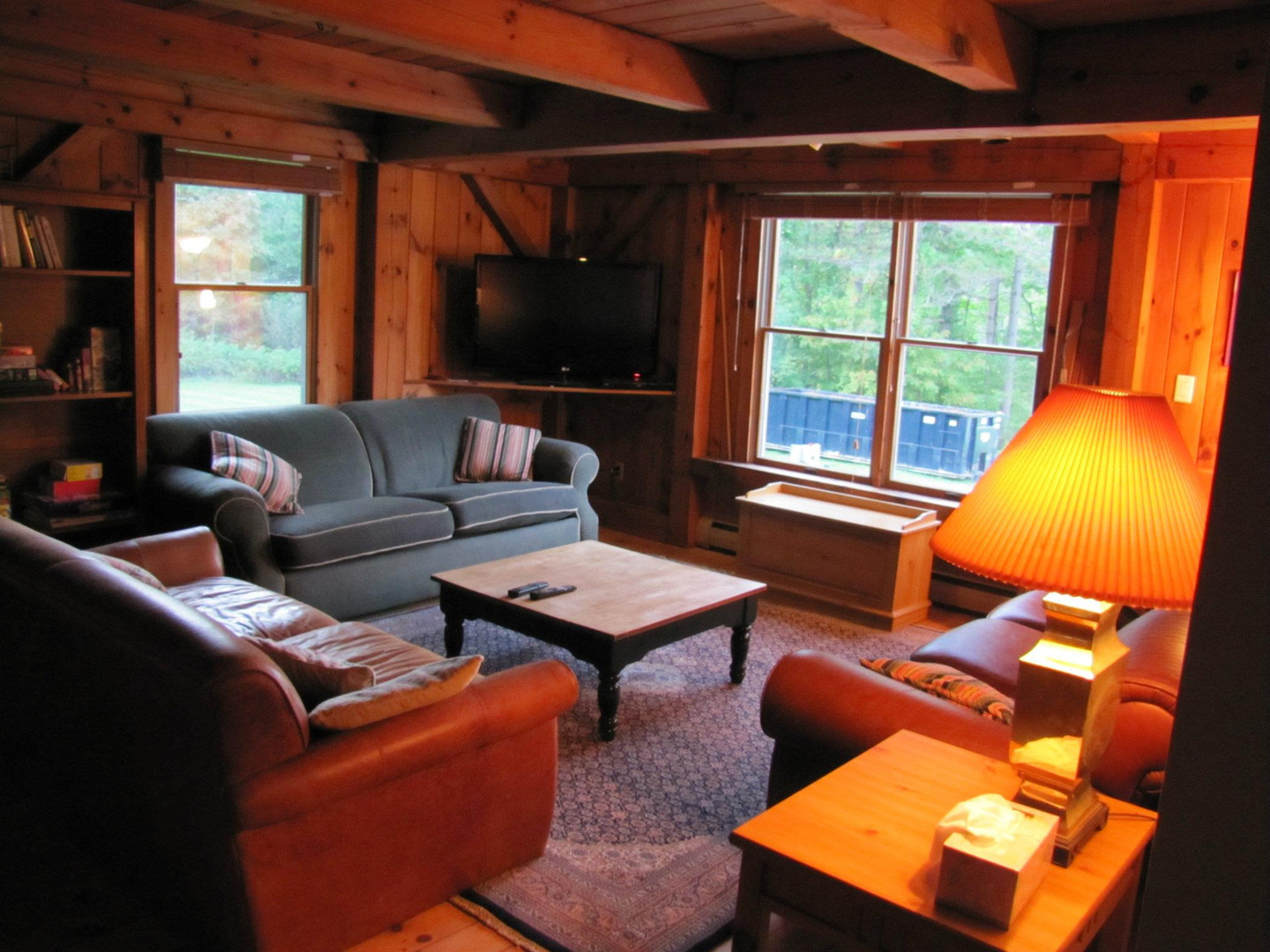 Timber chalet living room.jpg