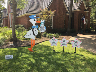 Stork Signs in Colleyville, TX!