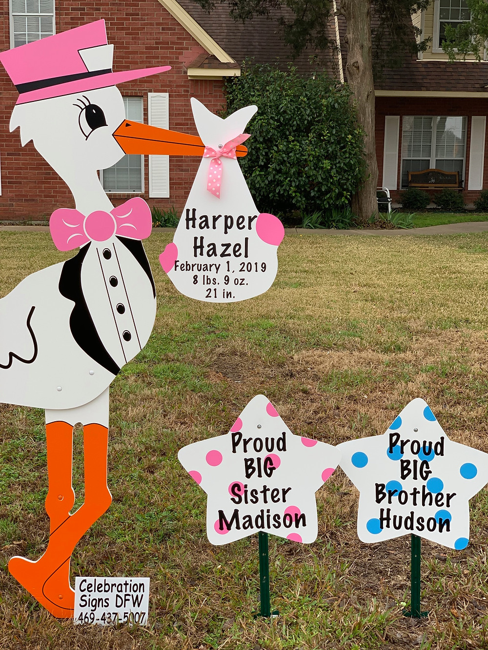 Baby girl stork and sibling sign