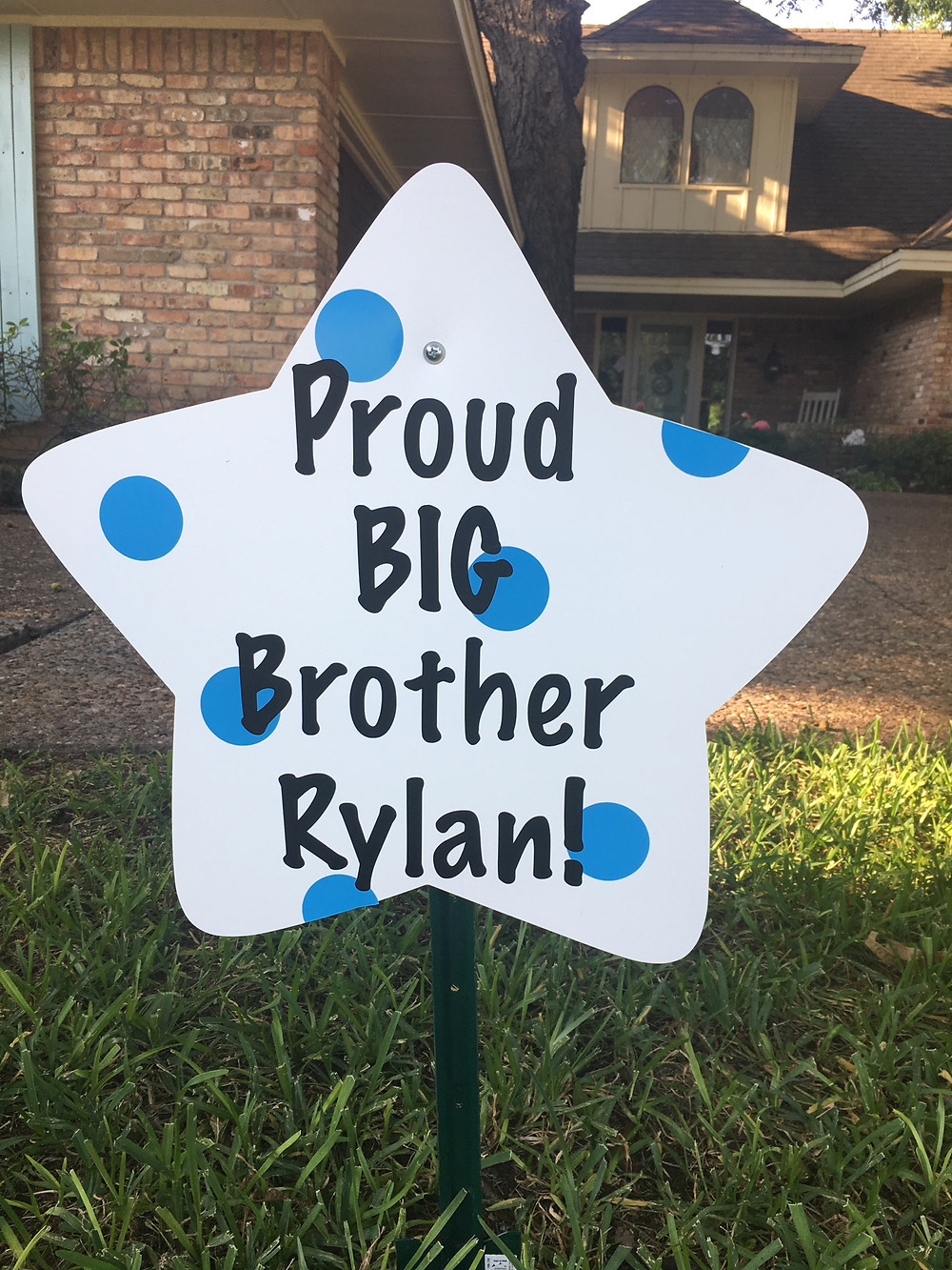 brother sibling star