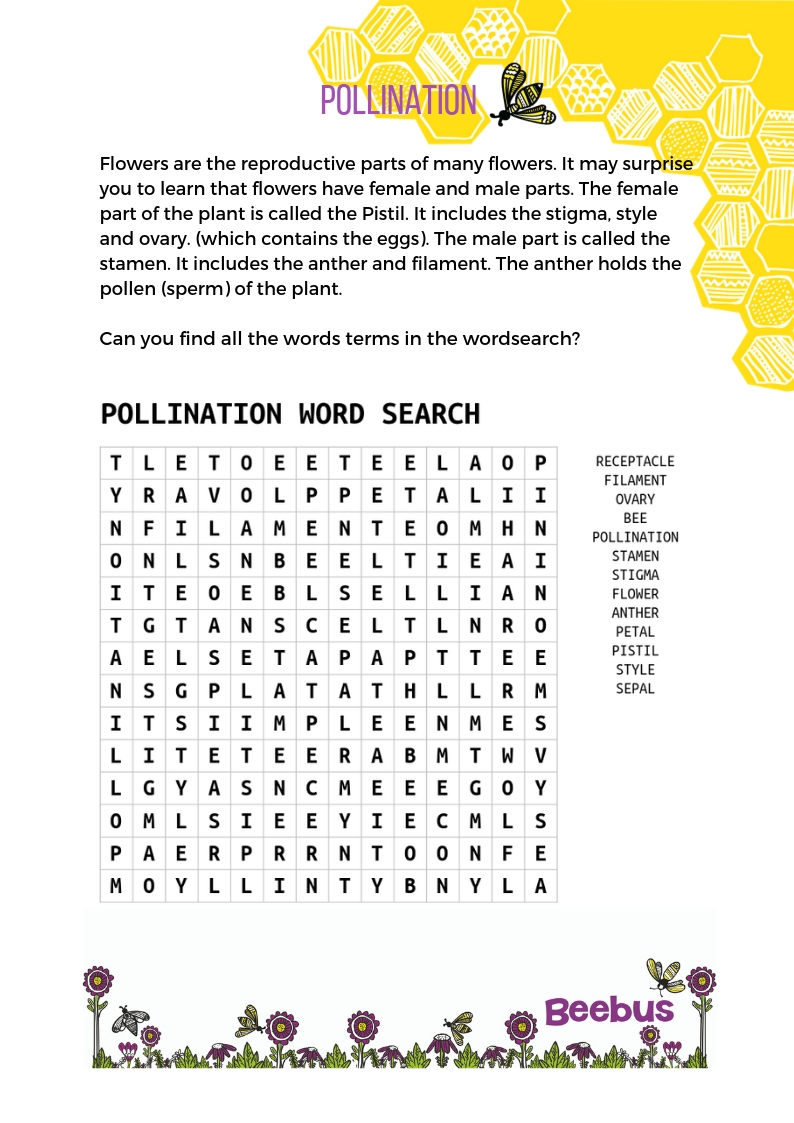 pollination word search