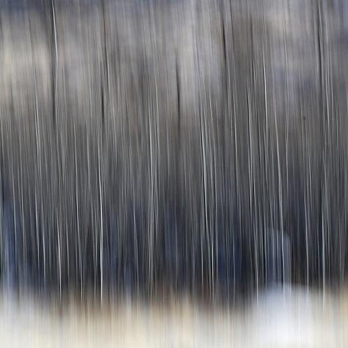 """A Winter's Hillside, No. 1511-9783, 36""""x36"""""""