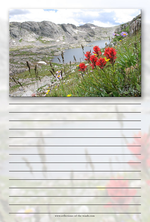 Note Pad - 6x9, High Altitude Paintbrush