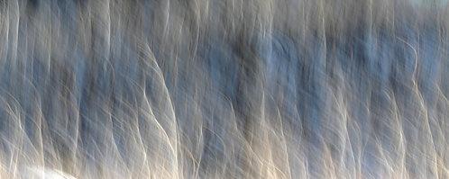 A Winter's Hillside, No. 1511-0190