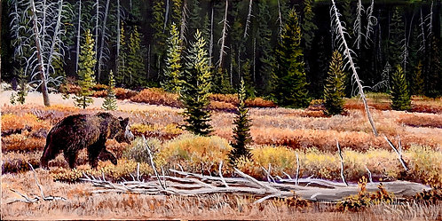Strolling Grizzly, oil painting