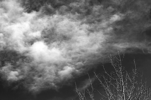 Dancing with the Clouds, Black & White 18-1028-42