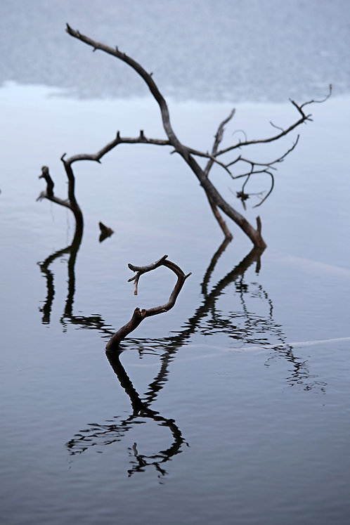 Spirit of the Lake, choose color or black & white