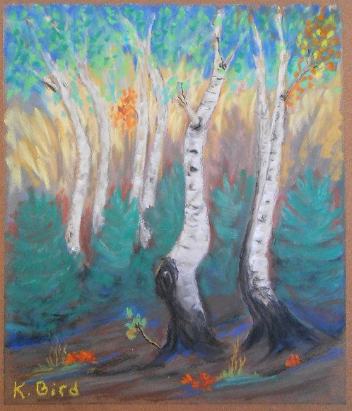 Dancing Aspens, framed pastel on sanded paper