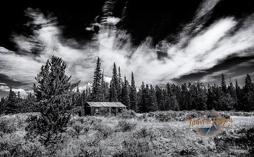 Shirley Mountain's Forgotten Cabin