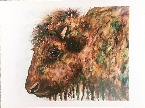 Brewster, print