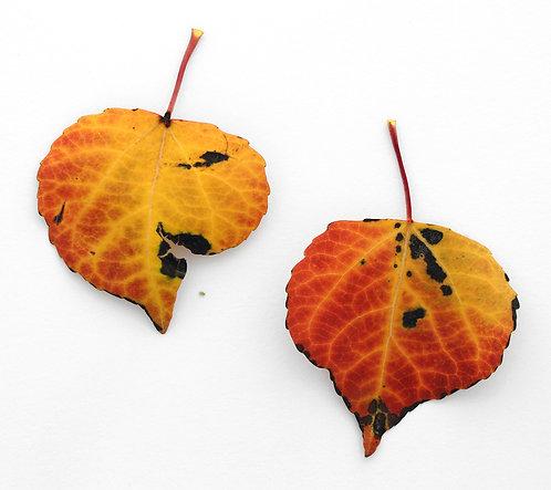 Fallen, Two Leaves