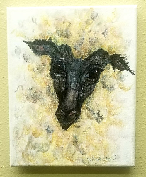 Black Faced Baylee, watercolor painting