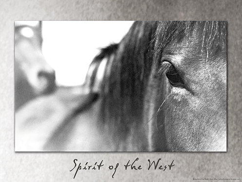 Poster, Spirit of the West