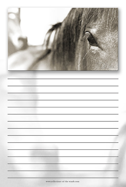 Note Pad - 6x9, Spirit of the West