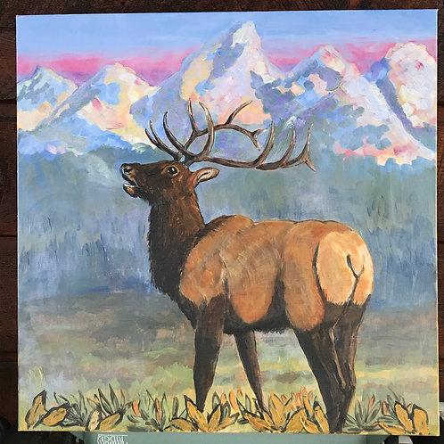 Teton Elk, acrylic on canvas