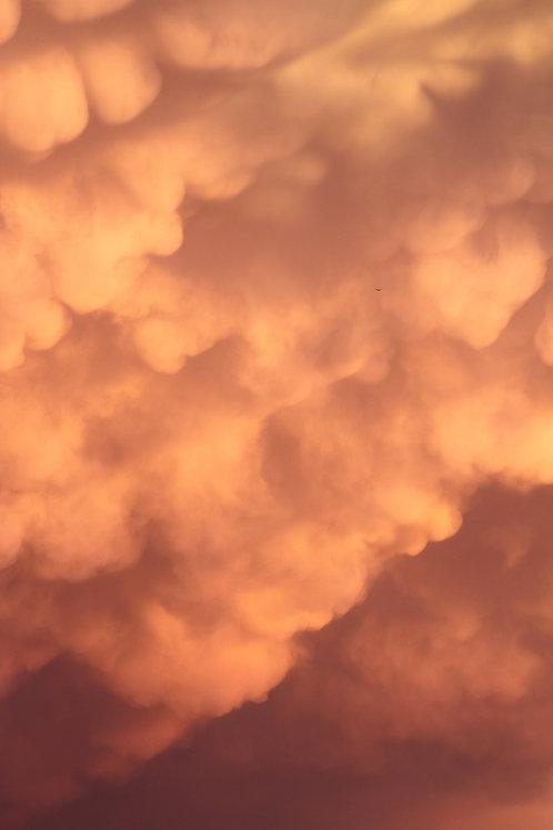 Magic Sky, 18-1710-87