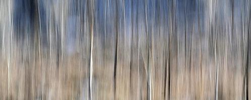 A Winter's Hillside, No. 1511-0010