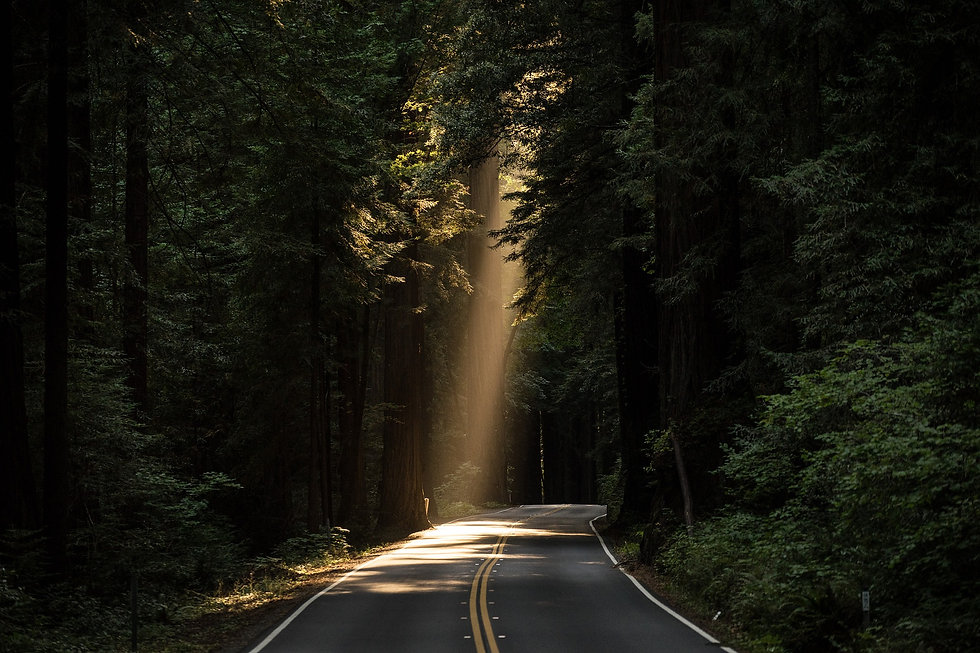 sunlight on road Image by Pexels copy.jp