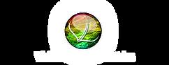 VisibleLightLogo-HD.png