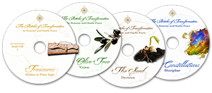 at-dvd-all4labels-1-300.png