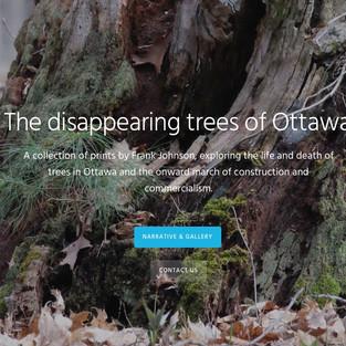 Lost-trees
