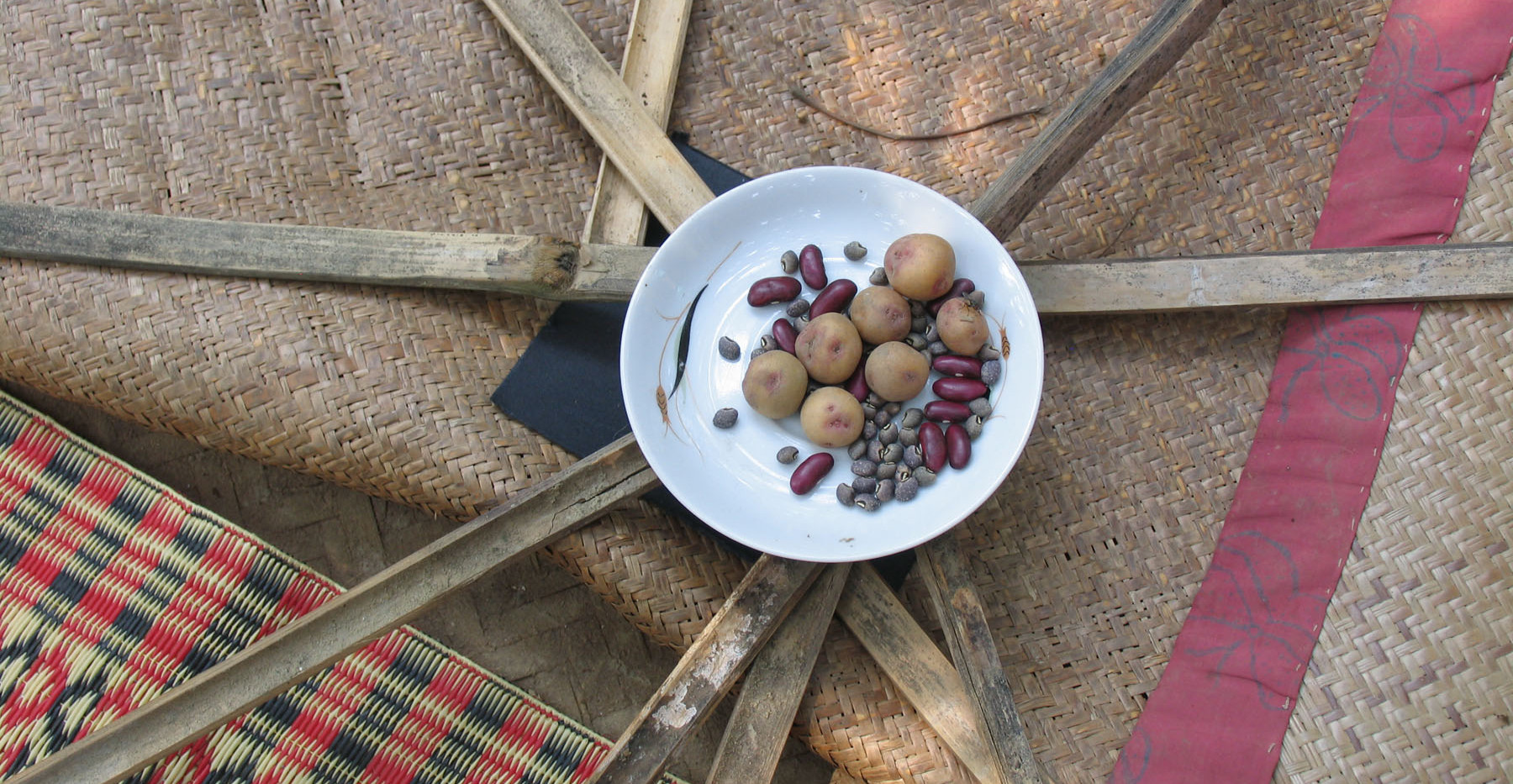 Bangladesh-potato-wheel.jpg