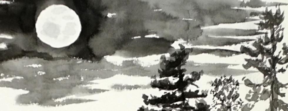 Temagami burning, detail