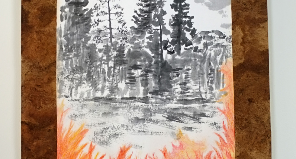 Tree-bark on fire