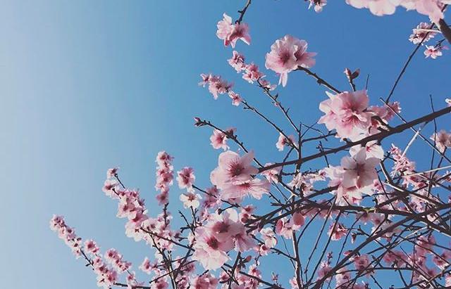 3/22(月)〜25(木)関東セッションのお知らせ。