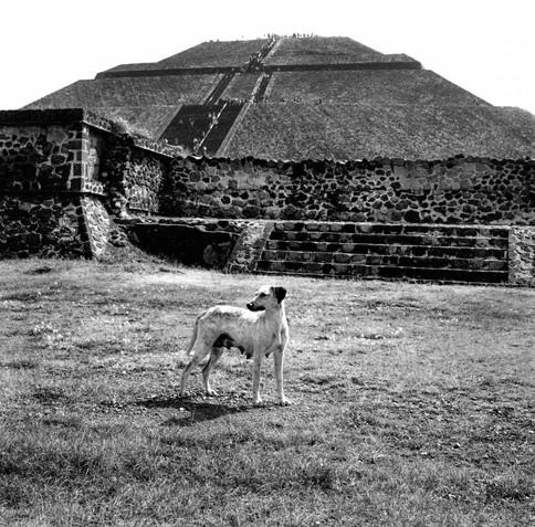 M21A_Street_teotihuacanPyramid8-Edit.jpg