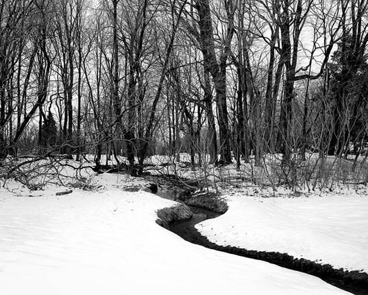 M21Q_Landscape_Cemetery6-Edit.jpg