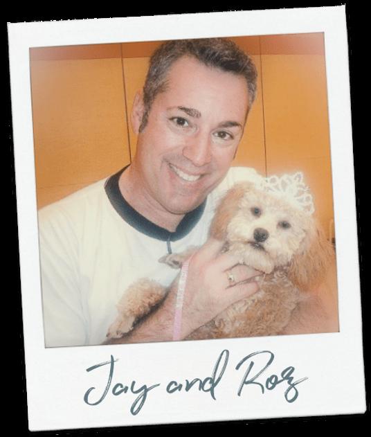 fur baby, pets, pet lover, toy poodle, pet memories, pet video memorial