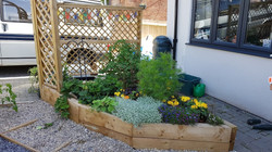 A raised bed in the city