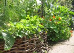 Woven raised flower bed
