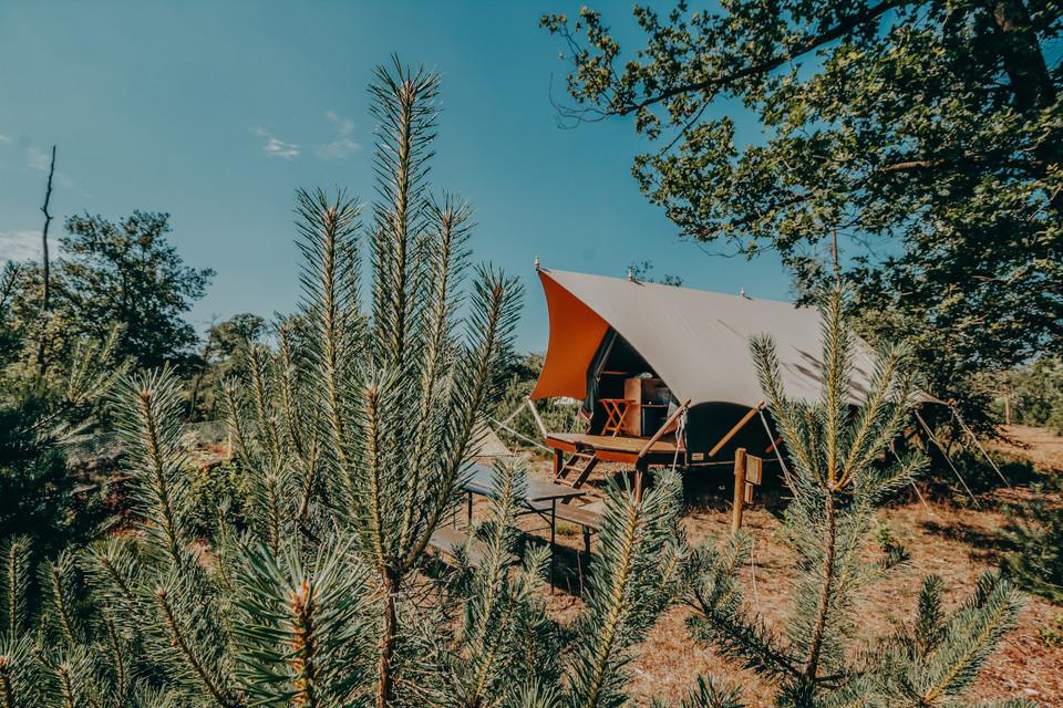 glamp-outdoor-camp-awaji_lowresjpg