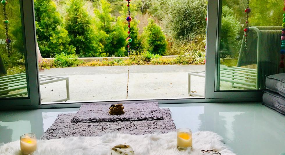 The Sacred Lotus in the Malibu Mountains.JPG