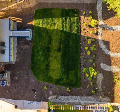 Building a PNW Rain Garden: Your Complete Guide
