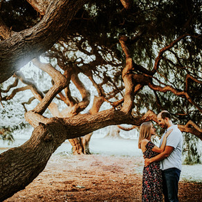 Horticulture Center Engagement / Christa & Vince / By Alexzandra