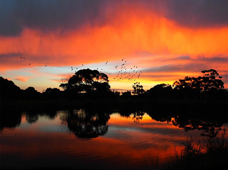 Sunset3.jpg