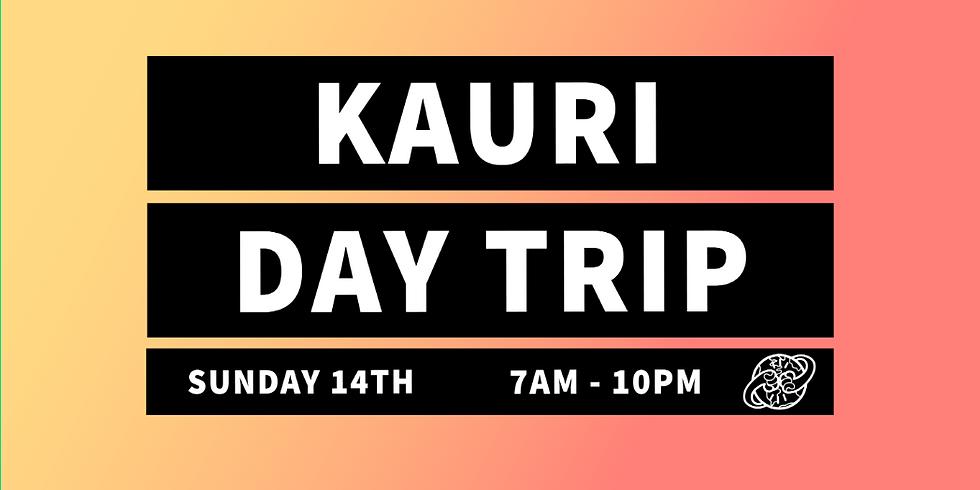 Kauri & Kai Iwi Lakes Day Trip