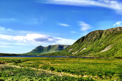Newfoundland (Green Hills)