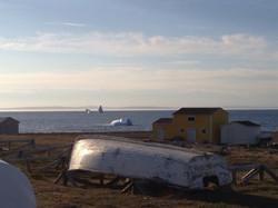 Newfoundland Coast (Icebergs)